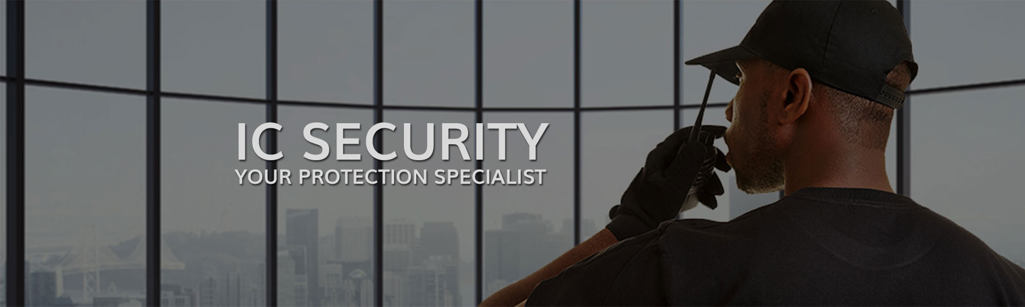 IC Security Protection Specialist